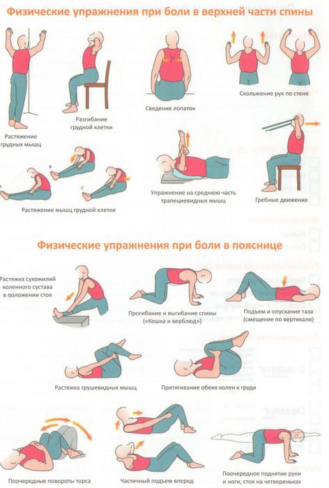 Упражнения при остеохондрозе шейно-грудного