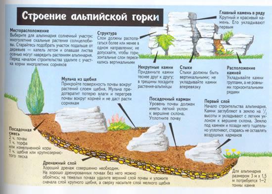 Альпийская горка своими руками пошаговая схема 689