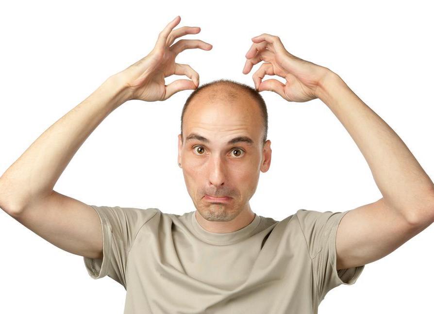 Из-за каких паразитов выпадают волосы