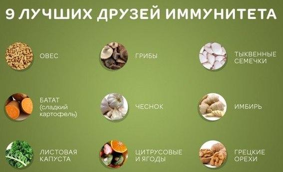 Как повысит иммунитет в домашних условиях - Rc-garaj.ru
