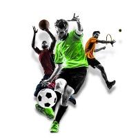 Как можно выиграть на ставках на спорт