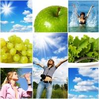 как вести здоровый образ жизни питание