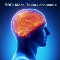 научные фильмы по психологии