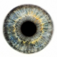 тренировка для глаз игра