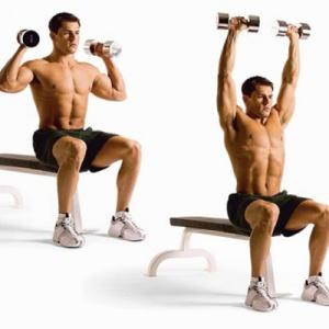 спортивное питание для эктоморфа