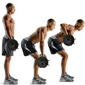 упражнения для тренировки спины