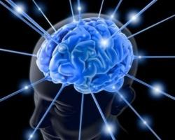 Как развить мозг