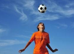 Самые популярные виды спорта