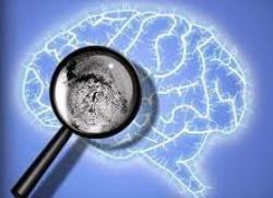 вклад юнга в психоанализ